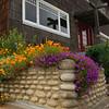 House on Scenic Drive Pacific Grove California