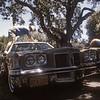 Polishing Hope's old car