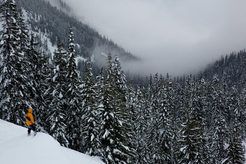 Alpental Valley view