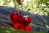 My man Elmo..taking a break from the Columbus day parade
