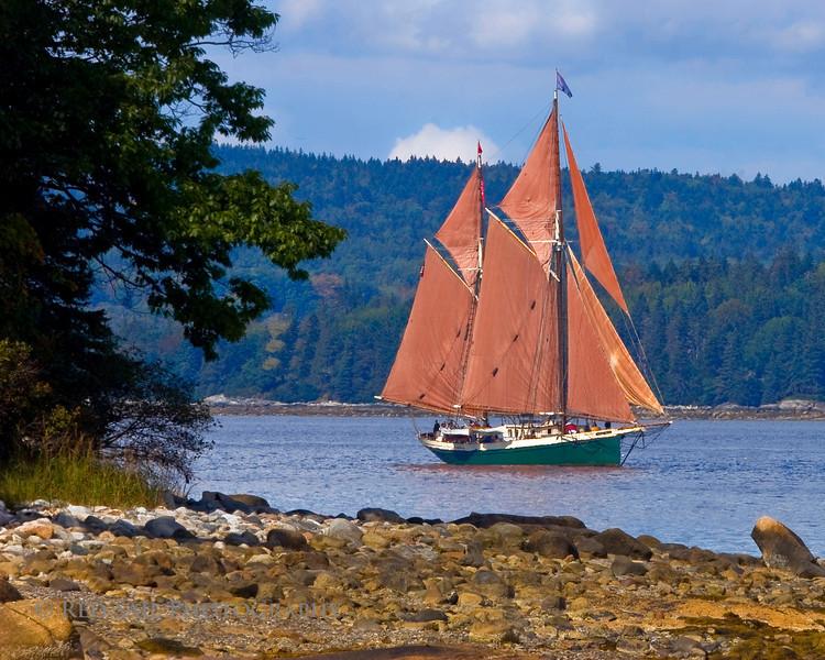 Schooner, Angelique sails the Eggemoggin Reach towards Brooklin Maine for the Windjammers Rendezvous at Wooden Boat School.