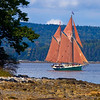 Schooner, Angelique sails the Eggemoggin Reach towards Brooklin Maine for the Windjammers Rendezvous at Wooden Boat School.