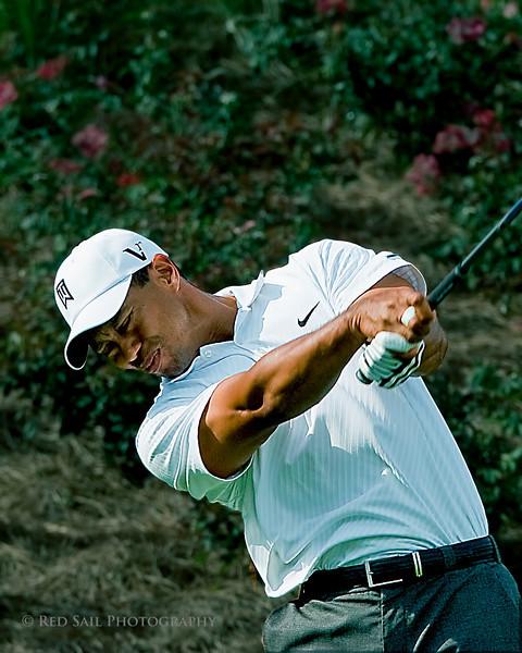 Tiger at the 18th tee.