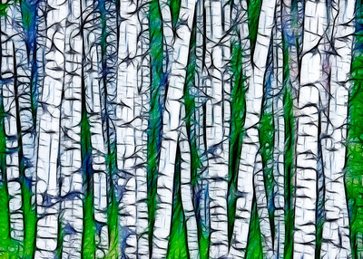 This is a photo of some aspen trees - processed in photoshop to enhance the contrast, then the Fractalius filter was applied. The result reminded me of a silk-screen print and I thought I'd put it out here.