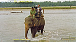 "LWT ""Blind Date"", Chitwan Elephant, 13th September 1997"