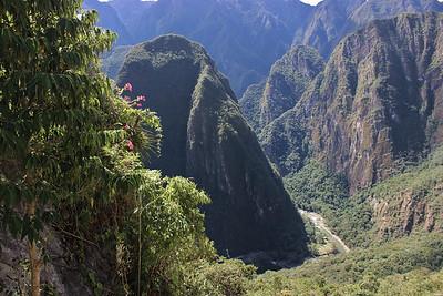Jungle Canyon