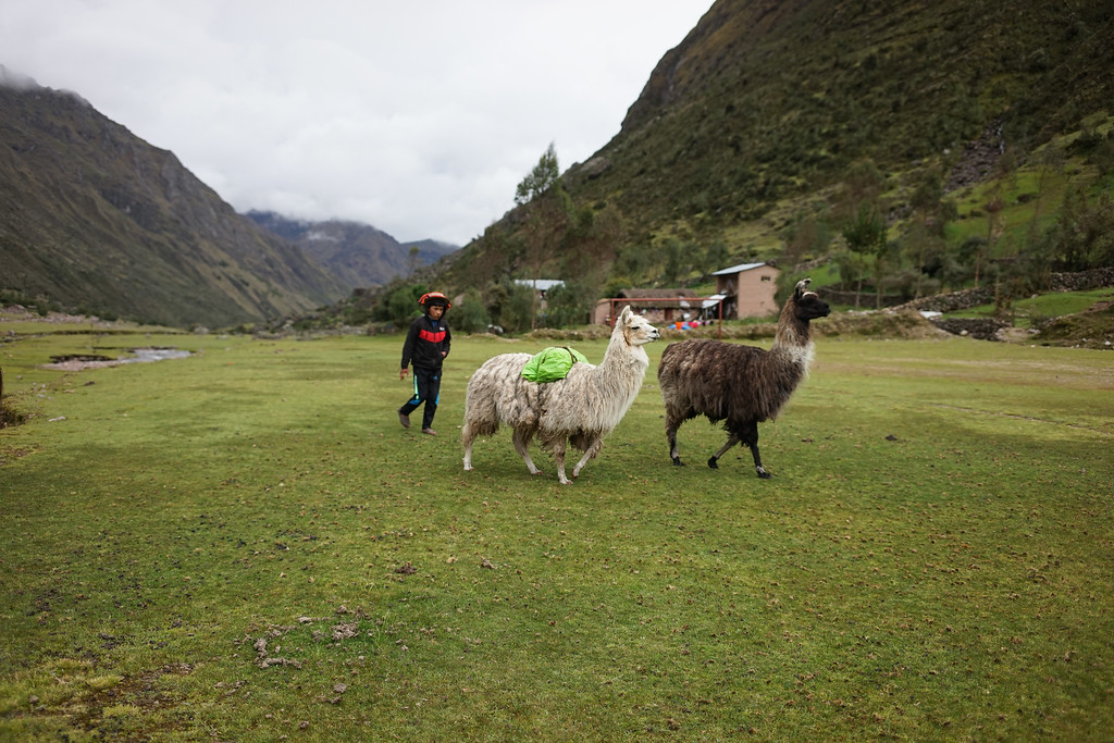 This village was very aware of the receding glaciers (global warming) and spoke about it's devestating effects. they were struggling to find places to water their livestock and crops. They do community farming and sophisticated crop rotation.