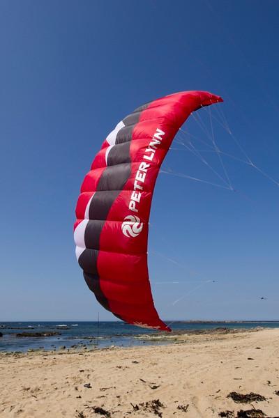 PeterLynn_Hornet_Fly1_Red_Wine