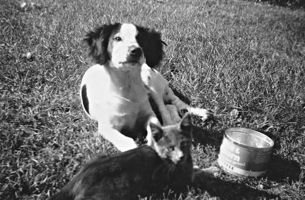 Mupsie and cat  (around 1950) at Joe and Vernie's in Hokah, Mn.