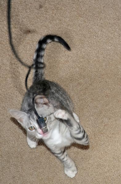Tamaru versus the USB cable