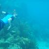 Culebra Tamarindo snorkel 2