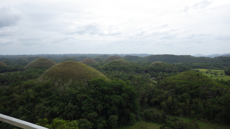 Bohol Chocolate Hills view from top 2