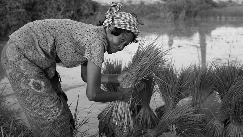 Phnom Penh_OCT_2013-567-Edit