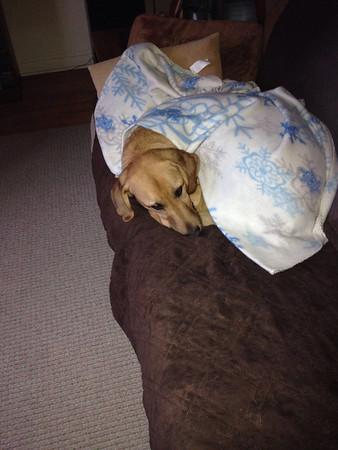 Little girl tucked in