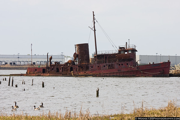 April 11 - Visiting the tugboat graveyard.