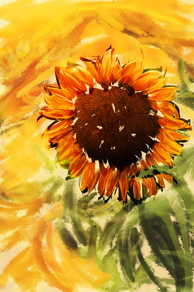 Original photo by Todd Trapani on Unsplash. Painting done in Corel painter 2020 by Joe Frazee. September 10, 2020