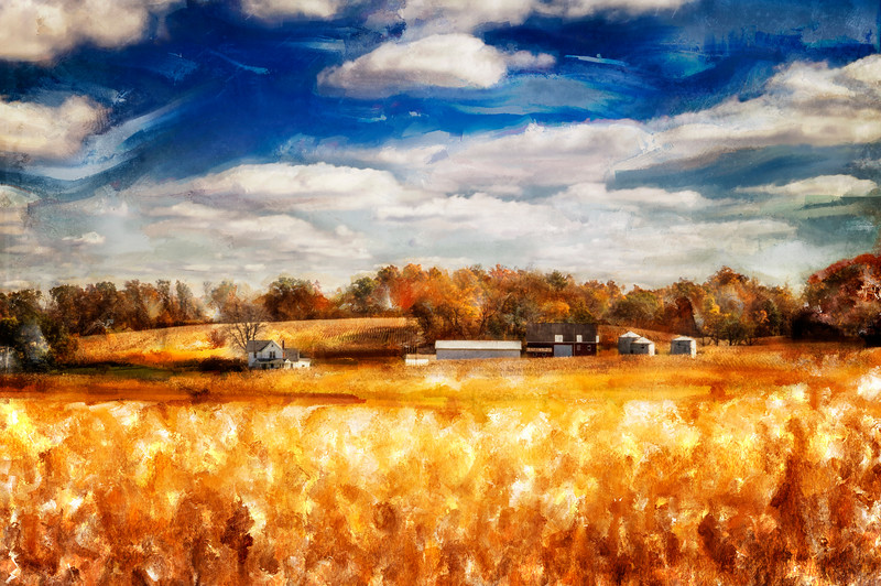 Photographed in Knox County, Ohio on October 17, 2014. Photoart with Corel Painter and Affinity Photo.