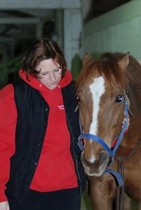 Photo class ( Horses) 006