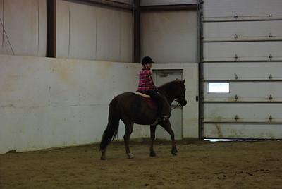 Photo class ( Horses) 038