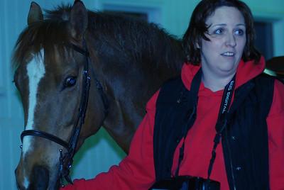 Photo class ( Horses) 009
