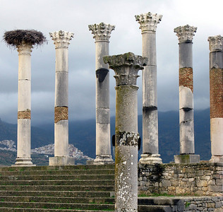 Several units still available - The Romans ruins at Volubilis, Morocco