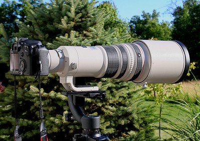 The 500mm and the 1.4x Converter mounted on the EOS 50D. Or, maybe I should say the 50D is mounted to the lens.