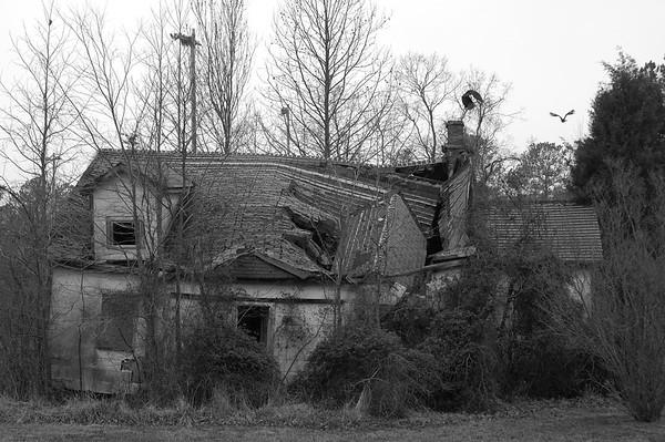 Photo Scavenger Hunt Feb 23-24