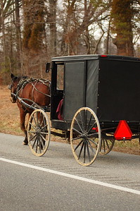 Amish buggy headed home.