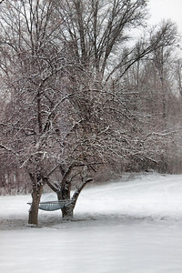 """Snowy Retreat"" Wednesday Feb.24th, 2010"