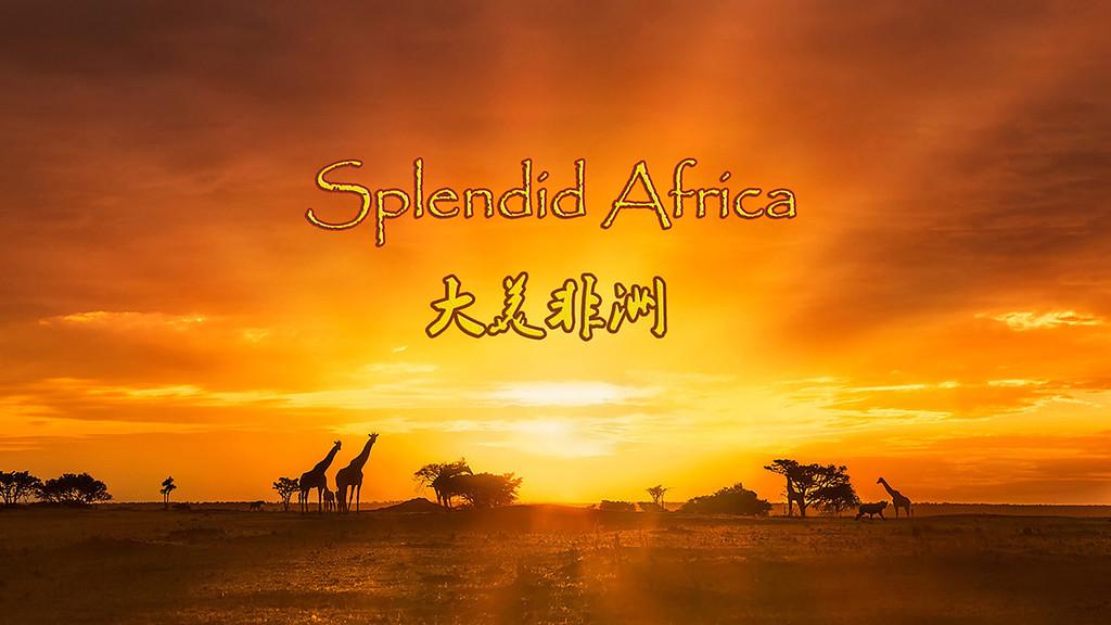 Splendid Africa-大美非洲-1920Full HD