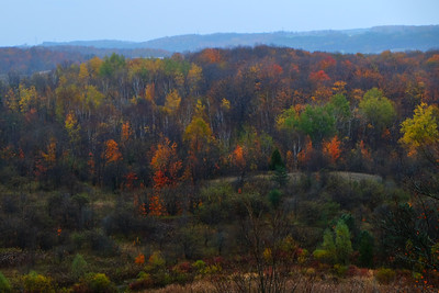 """Rich fall colours, rolling hills - X1 in the High Saturation """"Art Mode"""", for fun.  Only tweak was a few points on the clarity tool in LightRoom."""