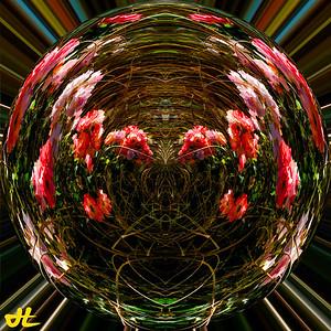 SP8_7275-Edit-orb