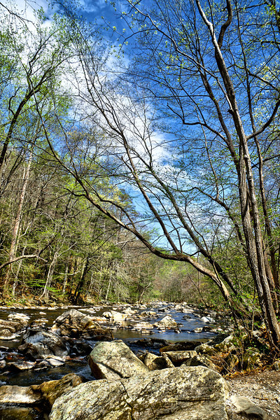 The South Branch in Early Spring, Ken Lookwood Gorge<br /> <br /> HDRI<br /> <br /> Spring 2012
