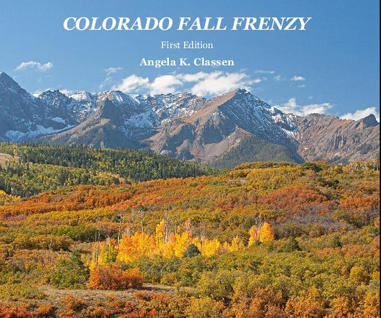"<div align=justify><h3>NOW AVAILABLE!  My new photography book, ""Colorado Fall Frenzy,"" showcases some of my favorite fall locations in Colorado including Steamboat Springs, Ridgway and Telluride.  The hardcover book measures 8"" X 10"" and contains 20 pages of stunning, full-color photographs. It is also available as an e-book through either <a href=""http://www.blurb.com/bookstore/detail/3988112/"">Blurb</a> or the Apple iTunes Store for $12.99.  Printed versions are priced $30 for the softcover version, $40 for the hardcover with dust jacket version, and $45 for the hardcover image wrap.  Price does not include applicable tax and shipping/handling fees.  The printed book can be ordered two ways.  You can contact me directly at: <a href=""mailto:niphotobyangela@aol.com"">niphotobyangela@aol.com</a>, or you can order it on-line through Blurb.  A full-screen, complete preview of the entire book can be viewed on <a href=""http://www.blurb.com/bookstore/detail/3988112/"">Blurb</a>."