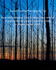 Sunset/Sunrise photography tip