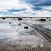 Low tide Scene