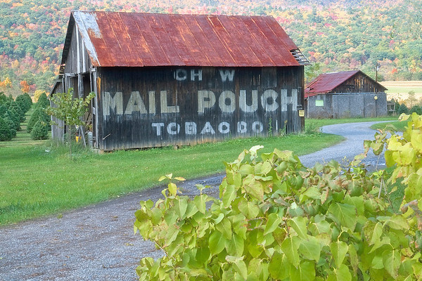 "The Missing ""E"" Mail Pouch<br /> Bedford, Pennsylvania"