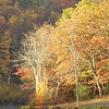 Golden Reflection<br /> Delaware Water Gap, Pennsylvania