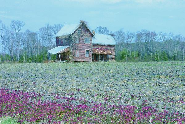 Forgotten<br /> Western Delaware