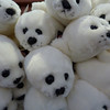 "Fluffy seal pup toys in ""The Deepstore"""