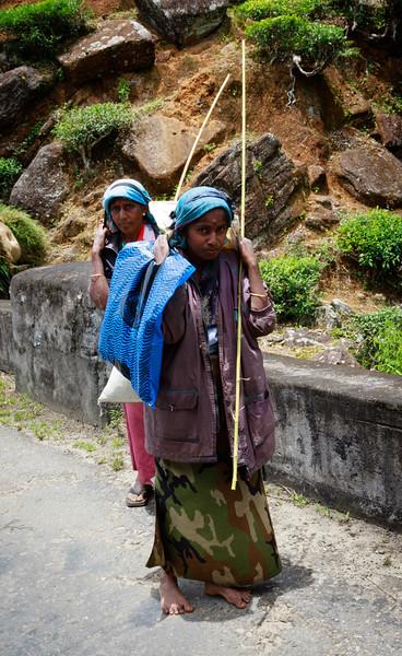 Tamil Tea Plantation workers