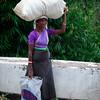Tea Worker
