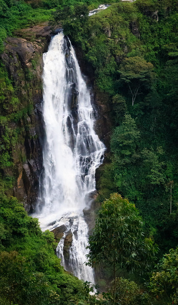 Waterfall in Tea Country