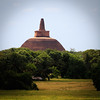 Brown Stupa (2nd largest brick edifice after the Pyramids)