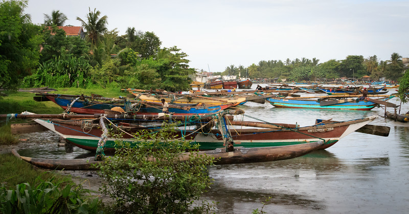 Fishing Boats in Colombo