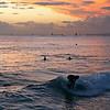 Surfing Waikiki at Sunset