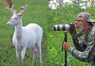 """""""  Photographing Albino Deer of Boulder Junction Wisconsin """""""