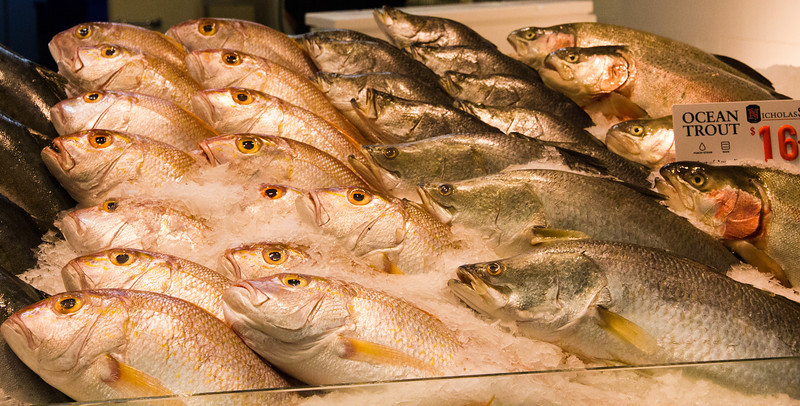 "Fish fish everywhere. <a href=""http://bit.ly/KAfoLD"">http://bit.ly/KAfoLD</a>"