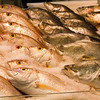 "Fish fish everywhere. <a href=""http://bit.ly/KAfoLD"">http://bit.ly/KAfoLD</a>"