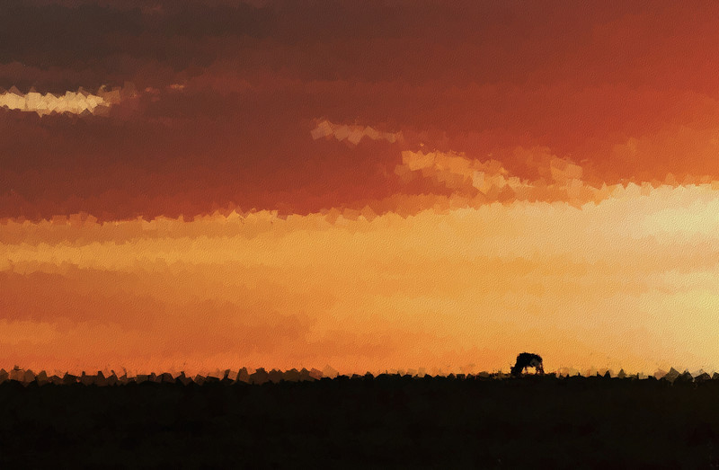 Masai Mara Sunset - Sponging